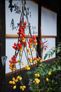奈良井の宿~3 - 薫の時の記憶