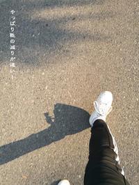 毎日歩くのはええけど、午後は大変眠い - Tangled with 2・・・・・