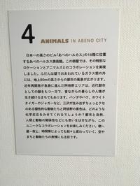 ANIMALS三沢厚彦展(大杉) - 柚の森の仲間たち
