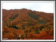 月山ダムから梵字川渓谷の紅葉〜山形家族旅行2日目〜 - キルトとステッチ時々にゃんこ