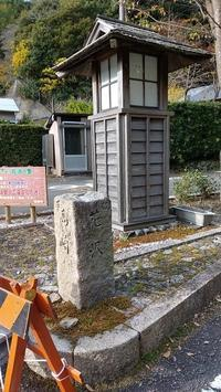 花沢の里の途中まで行ってきました - ウンノ接骨院(ウンノ整体)と静岡の夜