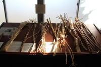 第16回米酒の会#5紙漉き2020年12月6日 - 無農薬で米作りから酒造りを楽しむ会 blog