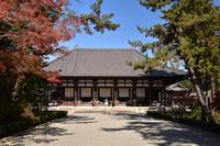 奈良西ノ京から斑鳩を行く - 無垢の木の家・古民家再生・新築、リフォーム 「ツキデ工務店」