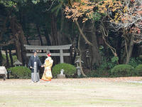 松江へ① - 清治の花便り