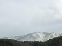 3~1週間遅い初雪、初積雪は、かすかな救いか。 - 大朝=水のふる里から