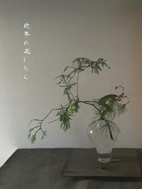新年の花したく - tukikusa note