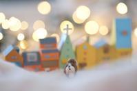クリスマス前に最高のプレゼント!! - じゅうべえな日々♪  「ファインダー越しにsmile☆」
