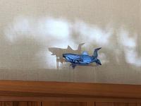 小さな光の水族館 - スタジオ紡