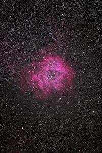 いっかくじゅう座バラ星雲 - Der Golfstrom