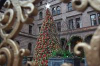 クリスマス明けにはロックダウンという噂 - NY/Brooklynの空の下