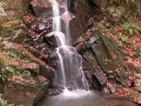 滝 - 万葉集の世界