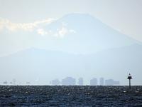富士山 - ネコと裏山日記