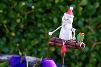 近家のクリスマス - 「シュクレはお留守番」スナップ日記