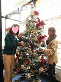 カフェのクリスマスツリー - eri-quilt日記3