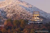 犬山の雪景色 - Digital Photo Diary