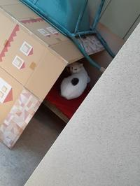 烏 - スズキヨシカズ幻燈画室
