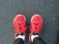 9年前に買った靴で2年ぶりにジョギング - 毎日テニス(旧 Rudern macht Spass.)