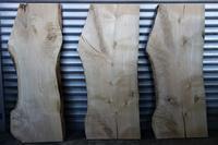 栓(セン)一枚板 - SOLiD「無垢材セレクトカタログ」/ 材木店・製材所 新発田屋(シバタヤ)