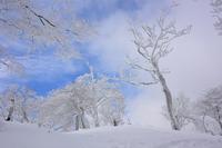 霧と青空の大峰の山稜一ノ峠~天川辻 - 峰さんの山あるき