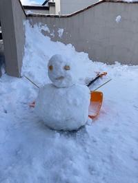 雪だるま・・・ - tag and chutchu