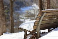 独りぼっちのベンチ - お山遊び