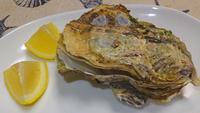 蒸し牡蠣12月20日(日) - しんちゃんの七輪陶芸、12年の日常