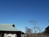 寒い。いろいろな野鳥 - 千葉県いすみ環境と文化のさとセンター