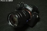 SONYのフルサイズミラーレスカメラを購入! - 四季彩の部屋Ⅱ