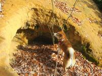 洞穴 - yamatoのひとりごと