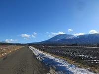 嬬恋村でのキャベツ消費ついて - 月の光 高原の風 かなのブログ