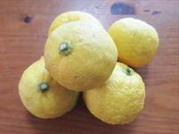 冬至なので…柚子と南瓜を楽しむ夜 - 岐阜うまうま日記(旧:池袋うまうま日記。)