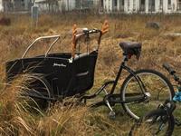 冬も自転車が大活躍 - のんびりgoing マイway