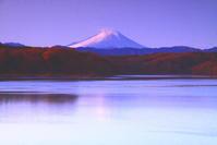 令和2年12月の富士(17)狭山湖の朝の富士 - 富士への散歩道 ~撮影記~