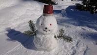 雪だるま作ってみました♪ - 今から・花