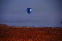 朝の枯野の気球 - 風の香に誘われて 風景のふぉと缶