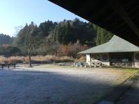 角松つくり。日なたの野鳥たち - 千葉県いすみ環境と文化のさとセンター