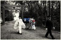 伊勢神宮の白い馬(神馬=しんめ) - コバチャンのBLOG