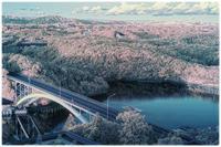 賢島の風景 - コバチャンのBLOG