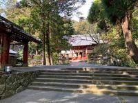 初詣 - 日本の心(団塊の世代)