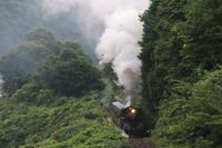 梅雨煙- 2020年・真岡鉄道 - - ねこの撮った汽車