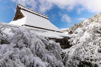 雪の京都2021初雪・常照皇寺(中編) - 花景色-K.W.C. PhotoBlog