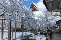 雪の京都2021初雪・常照皇寺(後編) - 花景色-K.W.C. PhotoBlog