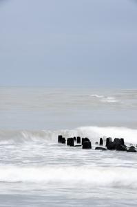 冬の海 - momo*photo