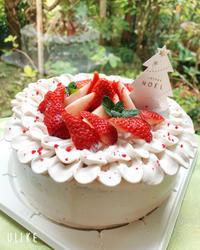 クリスマスケーキ2020 - 東京都調布市菊野台の手作りお菓子工房 アトリエタルトタタン
