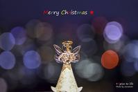 Merry X'mas ☆ - + Spice to life