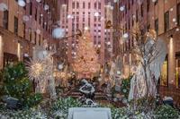 Merry Christmas 2020 - Triangle NY
