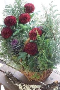 さぁお正月花へシフト!&クリスマスのちっちゃいお祝い - お花に囲まれて