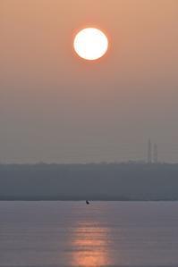 色んな朝日+フロストフラワー~今週のウトナイ湖+Mステ『炎』 - やぁやぁ。