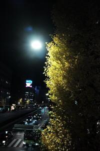 夜スナップ / X70 - minamiazabu de 散歩