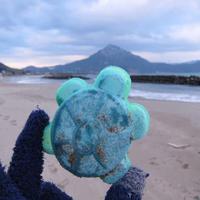 ミドリガメ - Beachcomber's Logbook